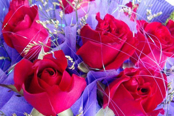 各种花的花语大全