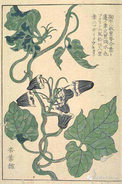 手绘花[shǒu huì huā]